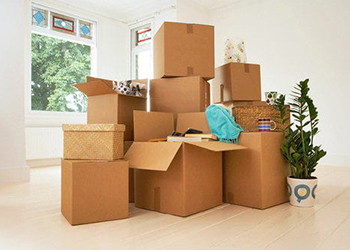 packers and removals
